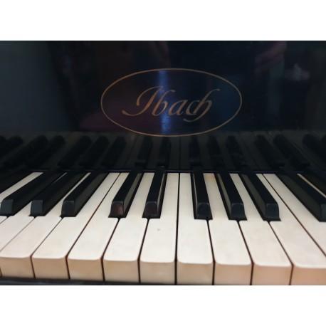 Fortepian IBACH